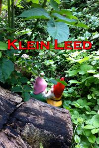 Klein Leed 02